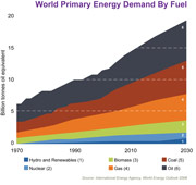 world primary energy demand by fuel